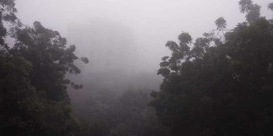 A blanket of fog had enveloped Delhi on Saturday morning with minimum temperature settling at 12 degrees Celsius.