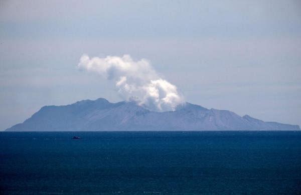 New Zealandto import skin to treat volcanic eruption survivors
