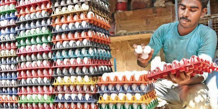 A wholesale egg seller arranging stock in Hyderabad on Saturday