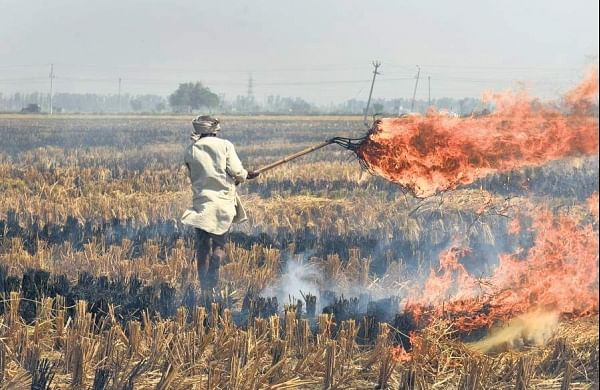 Stubble burning: Environment ministers of Delhi, 4 neighbouring states to meet on October 1