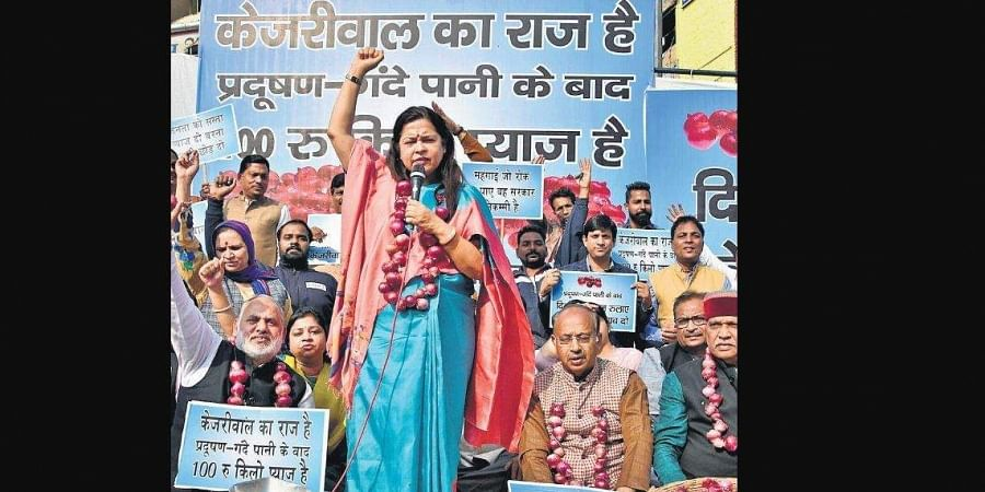 BJP leaders Meenakshi Lekhi, Vijay Goel and others staging a protest against the AAP government for failing to bring down onion prices.