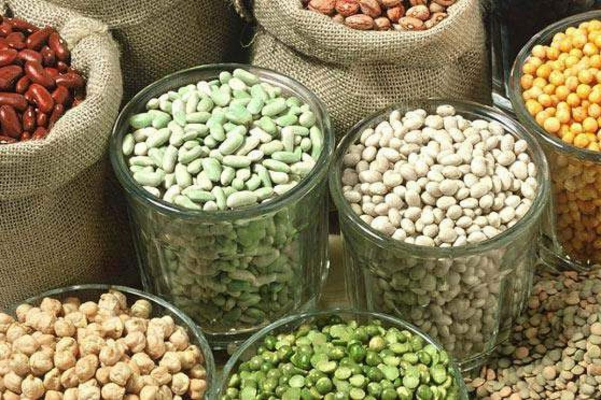 Image result for Pulse and Oilseeds