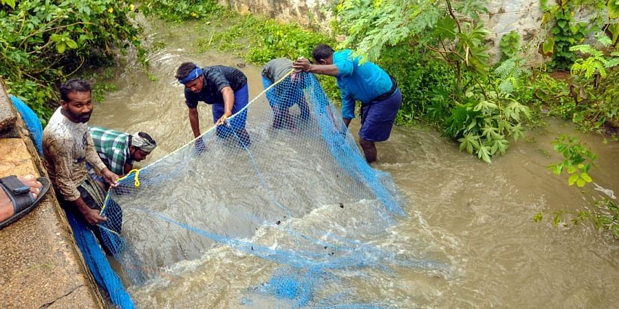 Mosquito nets are being used to fish in lakes like Mappalaiyar, Pallavan, Kumuthan and Puthiya Kulam, all of which are overflowing with rainwater.