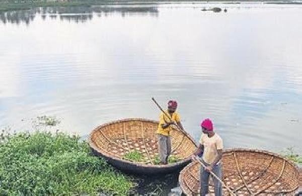 Desilt Bellandur, Varthur lakes by May: NGT
