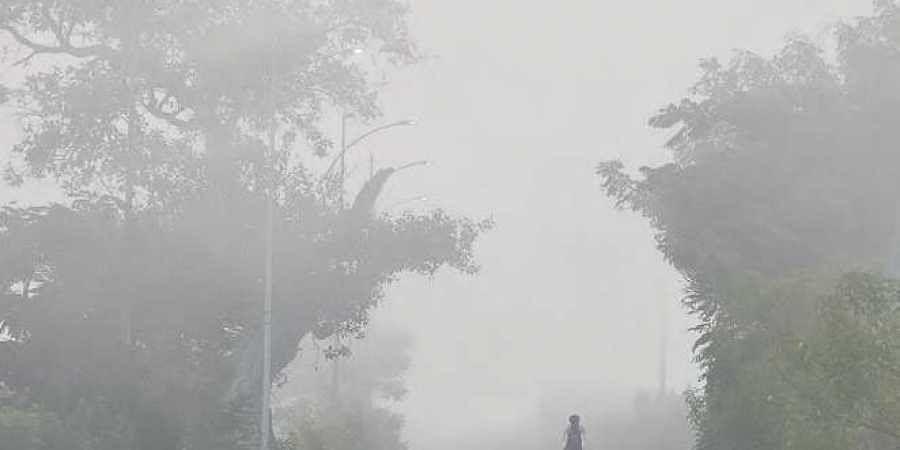 Dense fog blurs a city road on Thursday morning