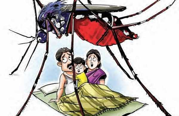 Climate change increasing cases of dengue?