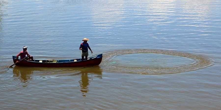 fishermen, fisherfolk, fishers