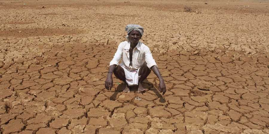 24 districts declared as drought-hit, number to rise in