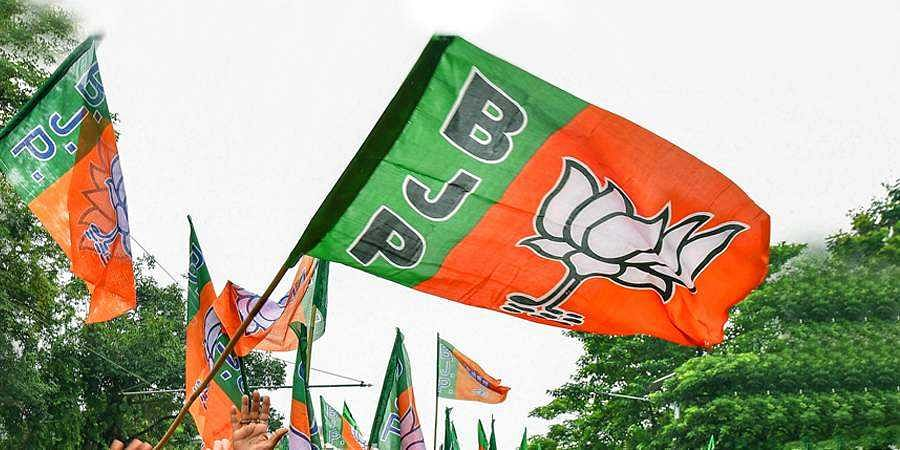 BJP Party Flag