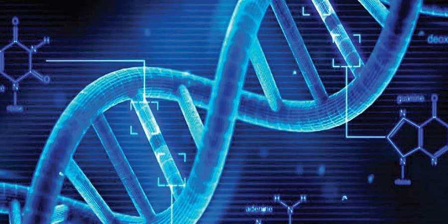 India to have 13 more cyber labs and DNA examination facilities