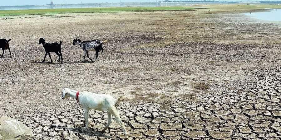A dried up reservoir.