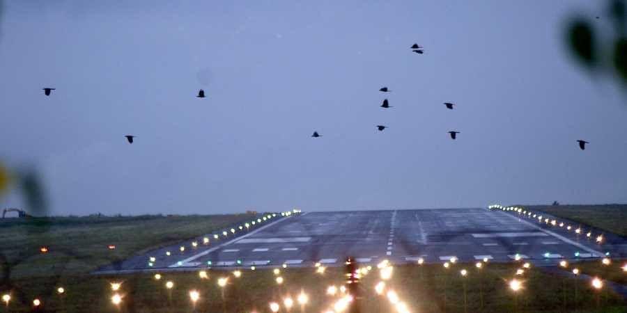Biju Patnaik International Airport, Bhubaneswar airport, ASQ award
