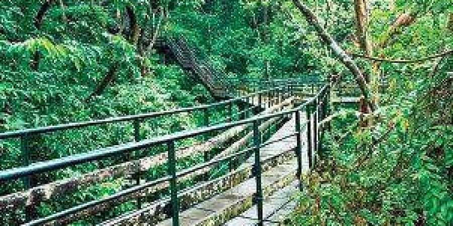 Thenmala Eco-tourism Promotion Society