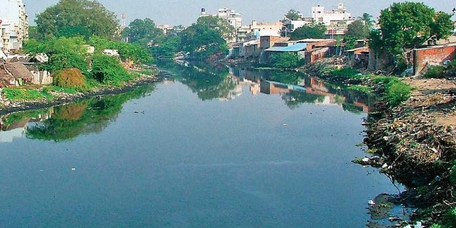 Cooum River
