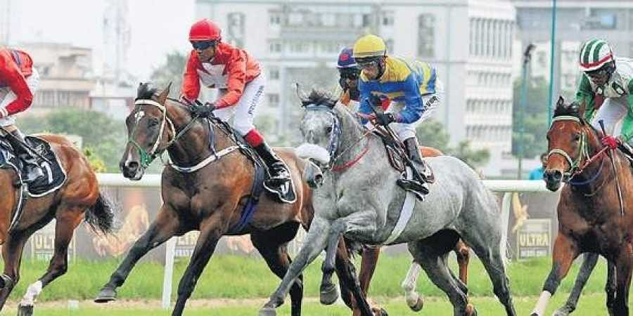 Horse race betting centre in bangalore sports betting statis