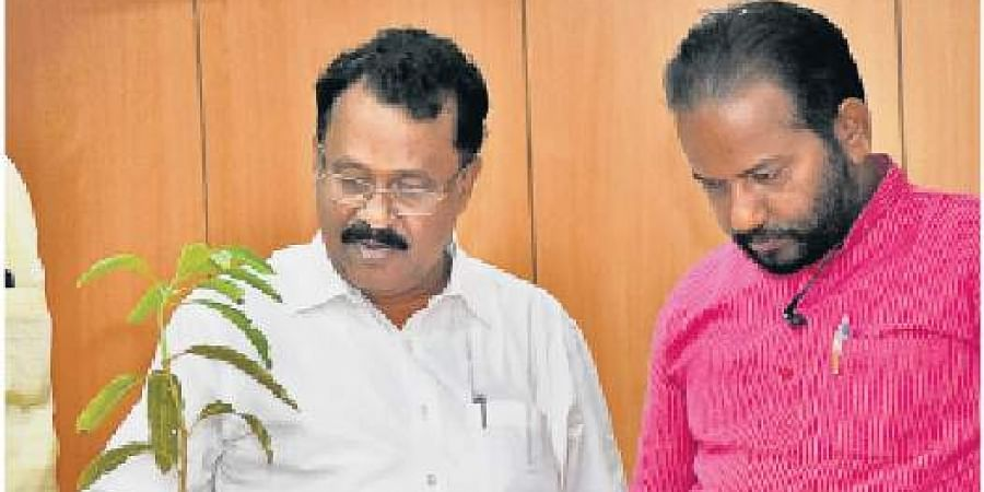 BJP state president PS Sreedharan Pillai curiously touches the mango sapling he received from Thiruvananthapuram Press Club on Tuesday. BJP Thiruvananthapuram district president  S Suresh looks on