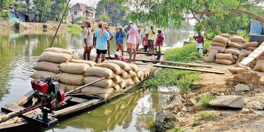 Farmers and headload workers unloading the paddy sacks from a country boat near Ramankary jetty in Kuttanad. The paddy farmers in the region have reaped a bumper paddy harvest owing to the floods which brought fertile alluvial soil along with its course