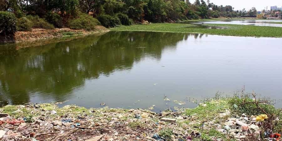 Chennai lake, water pollution