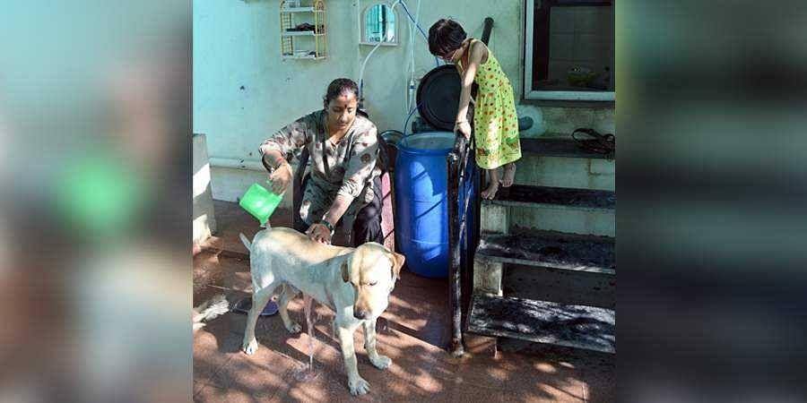 chennai water crisis, recycle