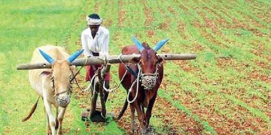 Crop loan waiver only after disbursal of Rythu Bandhu