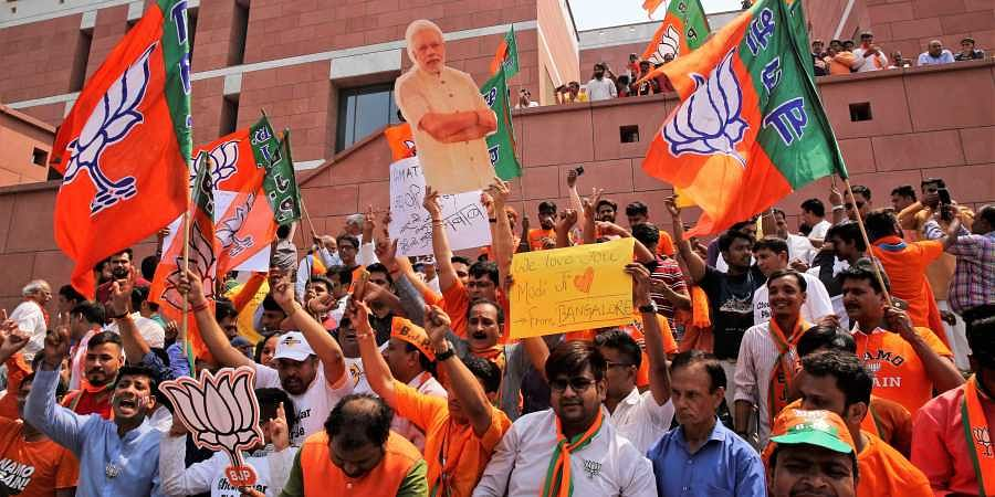 BJP supporters celebrate their party's victory in the general elections.