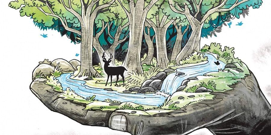 Sacred groves (Express Illustration)