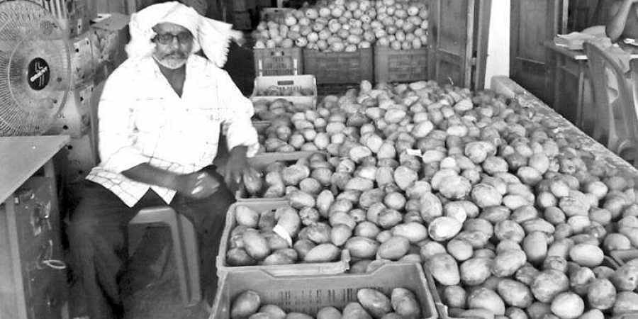 Mangoes in short supply in Silk City market- The New Indian