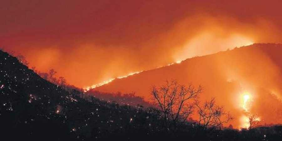 Fire blazing through forests.