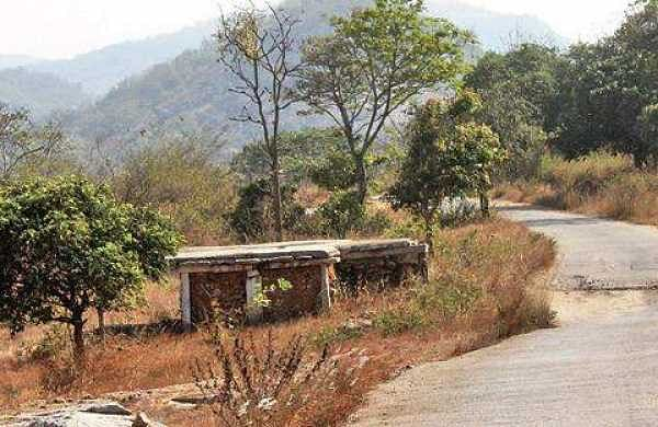 Expect Another road to Bannerghatta zoo soon