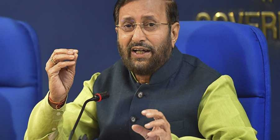 Environment Minister Prakash Javadekar says India's forest cover grew by 15,000 sq kms- The New Indian Express