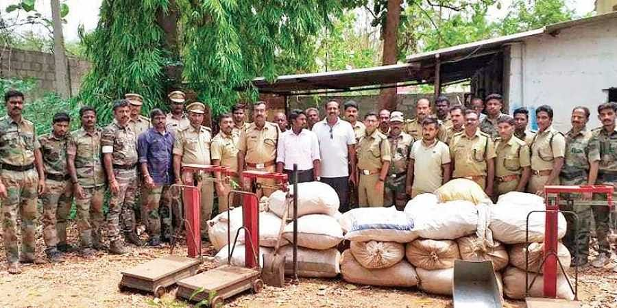 Smuggled Marayur sandalwood worth I1 crore seized from AP- The New