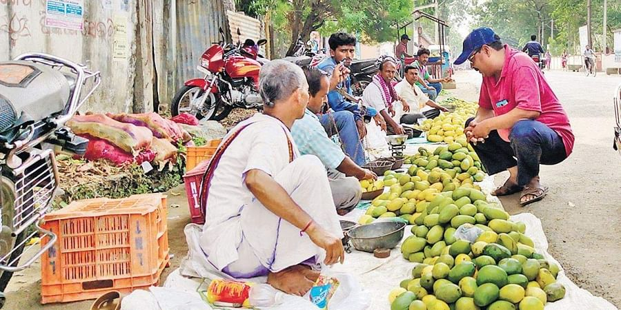 Mango farmers spread out their meagre produce for sale in Jeypore town.