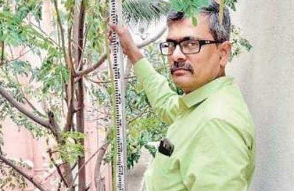 Scientist aims to set record with 4-storey-high tree