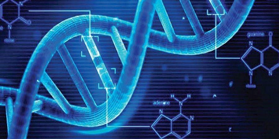 DNA, Human body