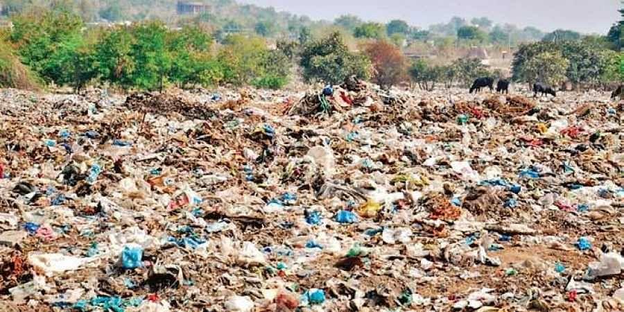 Taj Mahal, Garbage Mountain, Dumpyard
