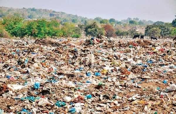 Residents turn Bengaluru dump yard into beauty spot