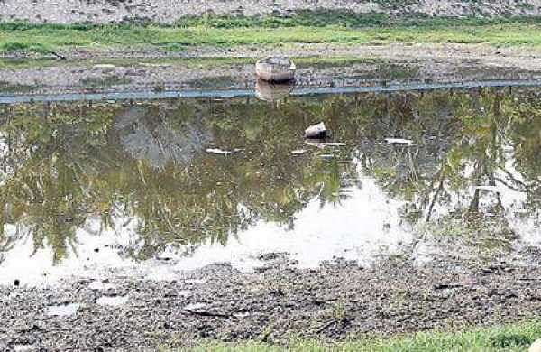 Colony residents strive to revive dying Kudikunta Lake in