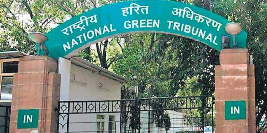 The NGT asked Ghaziabad DM to file affidavit on compliance of its judgment.