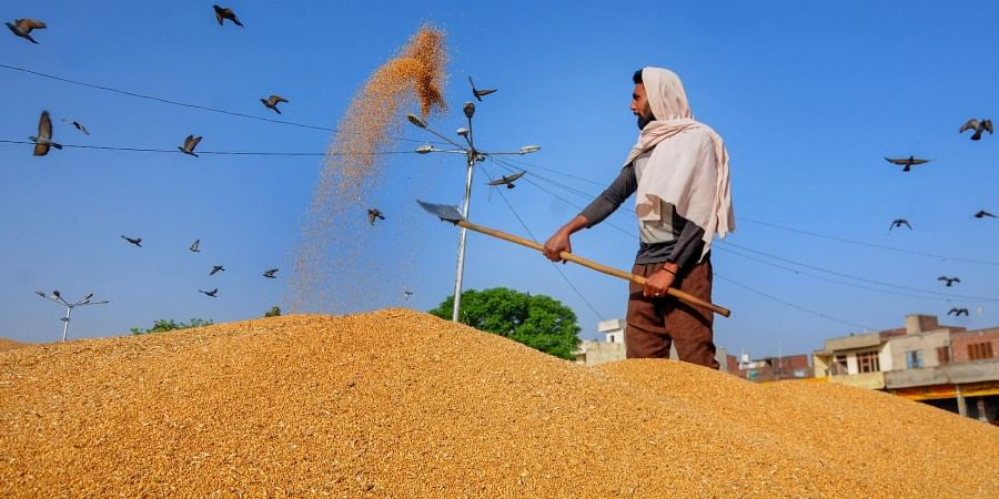 The lack of cash within their economic circles has led residents to exchange home-grown grain for ration.