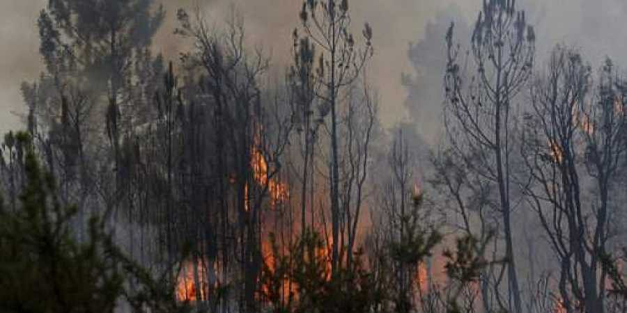 Thousands flee forest fire on Croatia party island