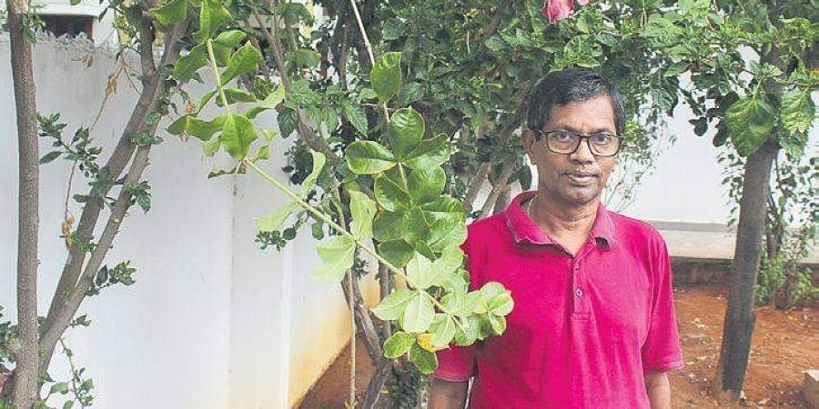 G Jayaraman in his garden.