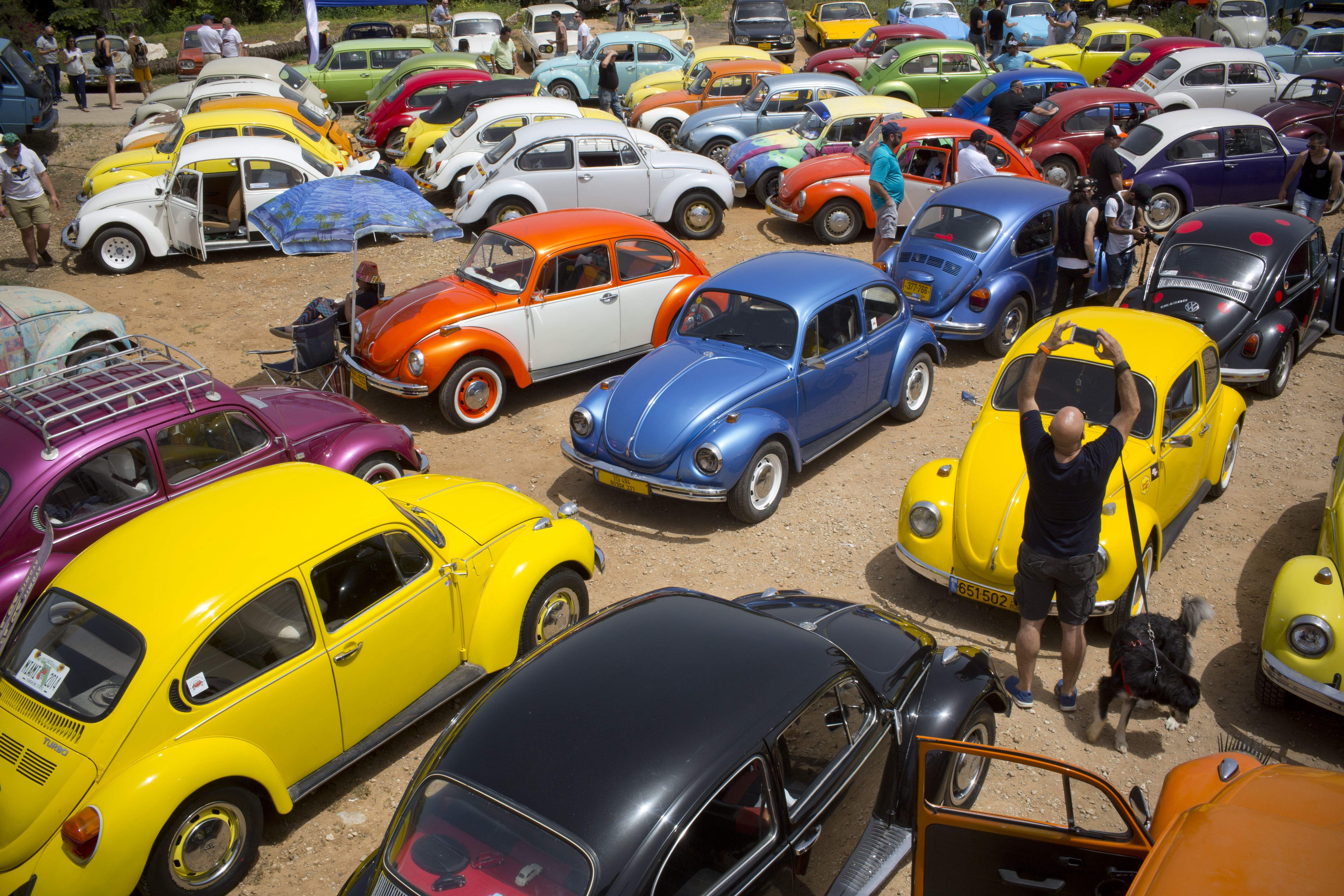 In this April 21, 2017 file photo, Volkswagen Beetles are displayed during the annual gathering of the 'Beetle club' in Yakum, central Israel. The Israeli Beetle club was founded in 2001 and there are 500 members. (File Photo   Associated Press)
