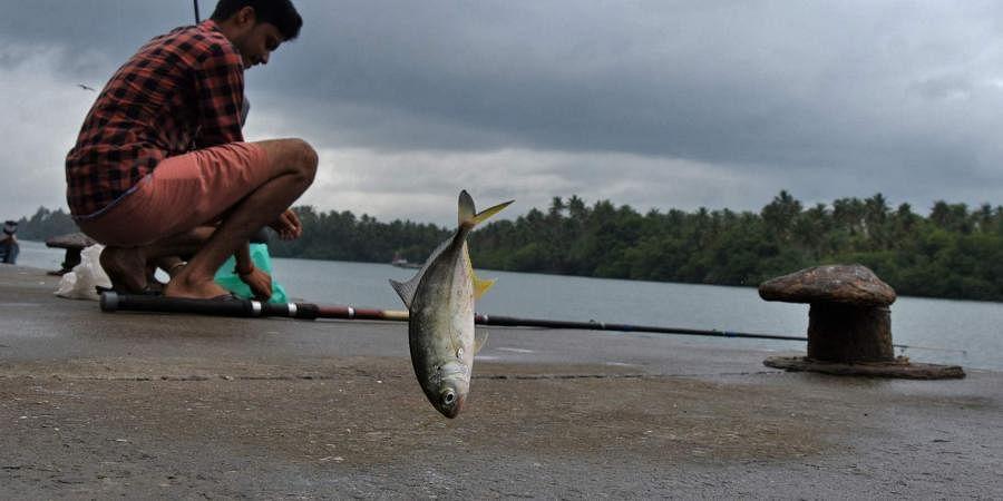 A scene from Muthalappozhi fishing harbour in Thiruvanathapuram.