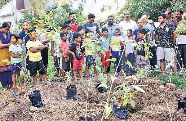 To save water, Chitlapakkam residents in Chennai adopt Japanese afforestation technique