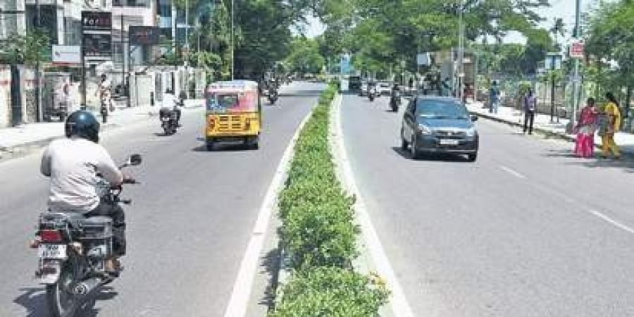 Greater Chennai Corporation to enhance median strips on 123 roads