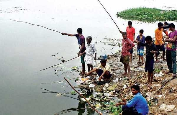 Residents remove 4.5 tonnes of garbage from Velachery lake