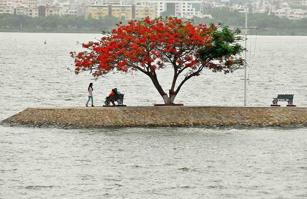 10% of suicide attempts at Hussainsagar lake are by elderly
