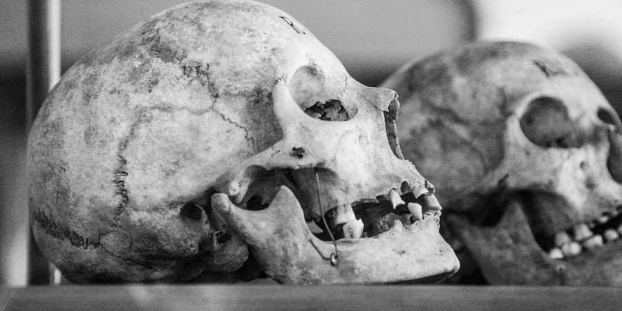 skull, back magic, sorcery