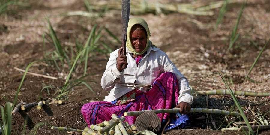 Sugarcane worker, Beed