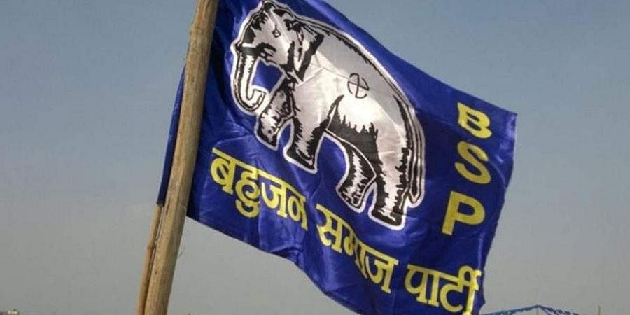 BSP flag